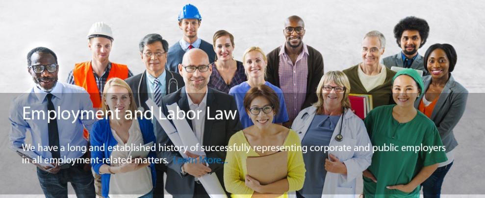 CMDA_EmploymentLaborLaw