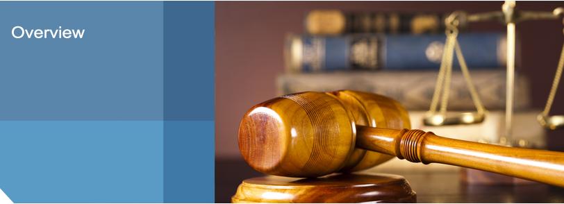 pg-litigation-overview
